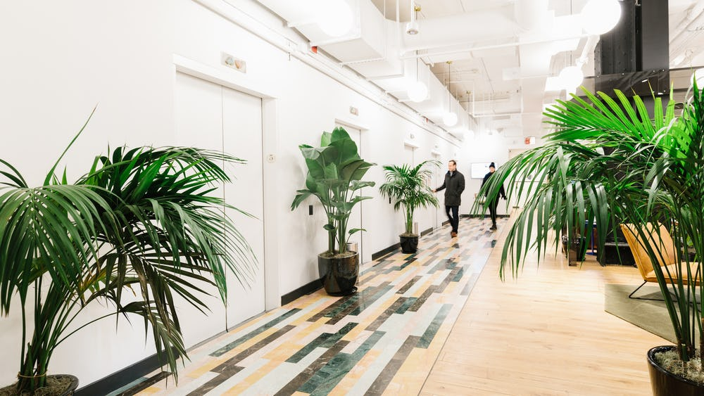 115 Broadway coworking