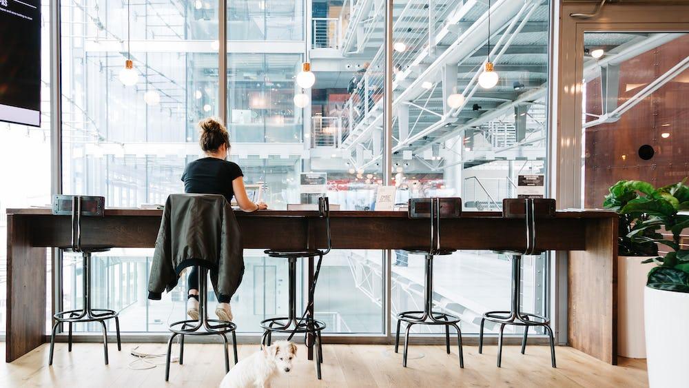 Gänsemarkt – Coworking